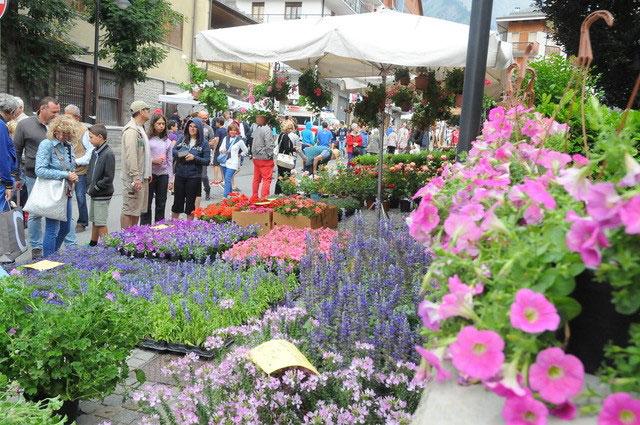 Flor Estate Bardonecchia: il programma e le novità